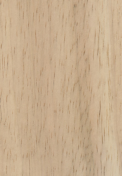 Rubberwood The Wood Database Lumber Identification Hardwood