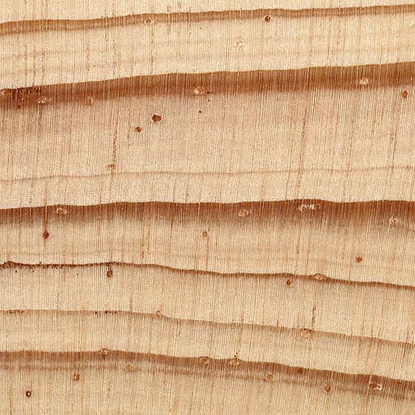 Pine Plywood Grain ~ Spruce pine the wood database lumber identification