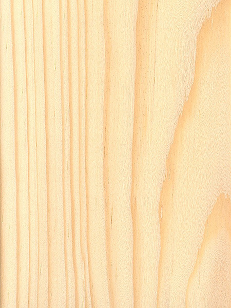 Pond Pine | The Wood Database - Lumber Identification (Softwood)
