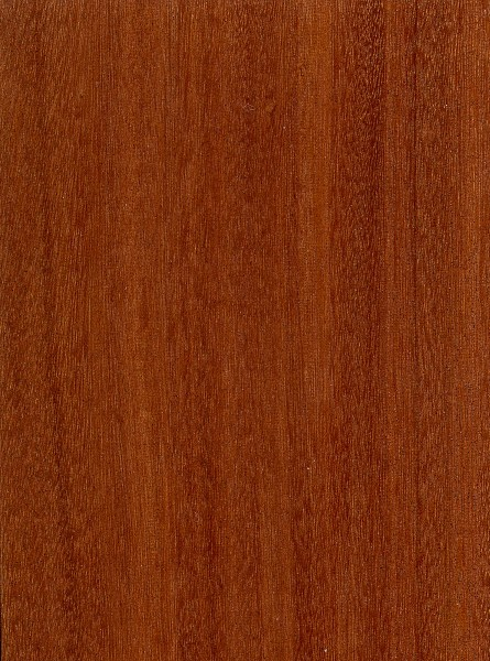 Santos Mahogany The Wood Database Lumber