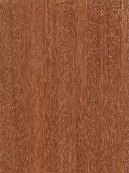 Santos Mahogany | The Wood Database - Lumber Identification