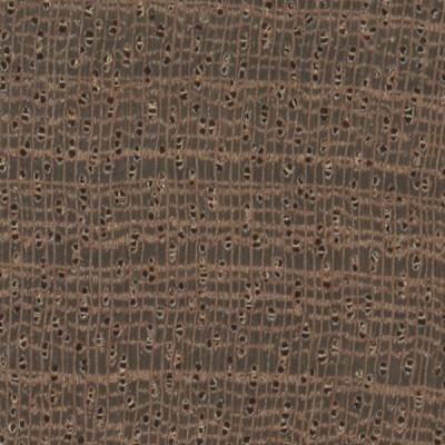 Sapele (endgrain 10x)