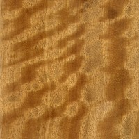 Satinwood (veneer)