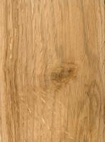 Scarlet Oak (sealed)