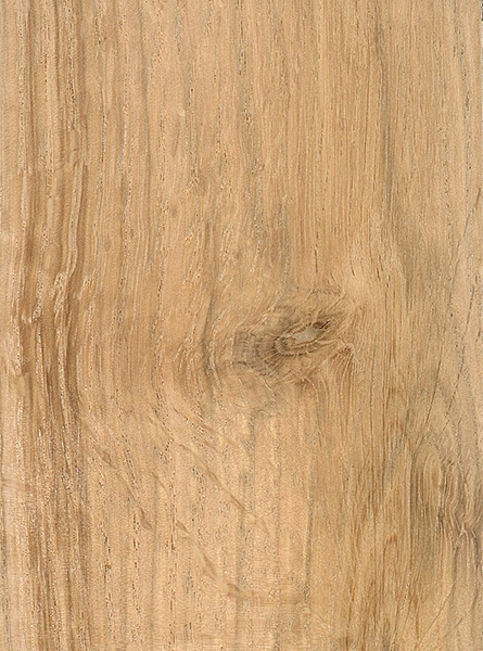 Scarlet Oak The Wood Database Lumber Identification