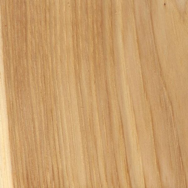 Bark Hickory The Wood Database