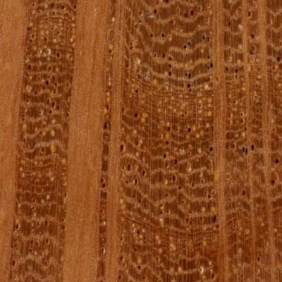 Sheoak (endgrain 10x)