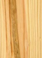 Shortleaf Pine (sealed)