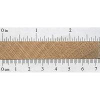 Shumard Oak (endgrain)