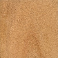 Northern Silky Oak: flatsawn (sealed)