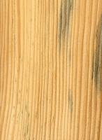 Slash Pine (sealed)
