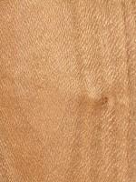 Southern Silky Oak (sealed)