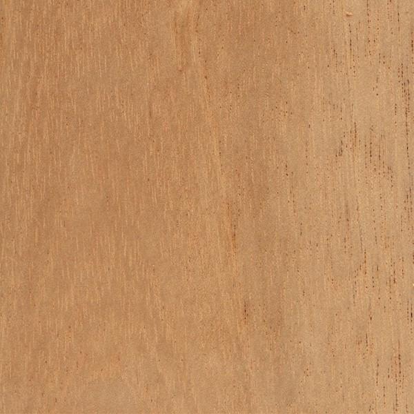 Fine Spanish Cedar The Wood Database Lumber Identification Download Free Architecture Designs Salvmadebymaigaardcom