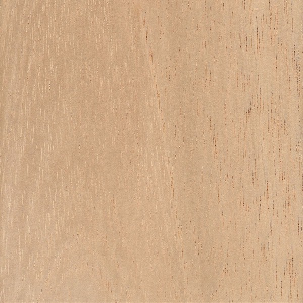 Spanish Cedar The Wood Database Lumber Identification