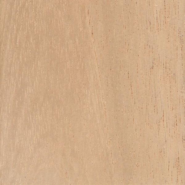 Amazing Spanish Cedar The Wood Database Lumber Identification Download Free Architecture Designs Salvmadebymaigaardcom