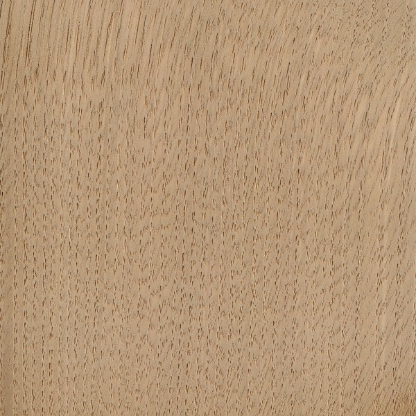 sweet chestnut the wood database lumber identification (hardwood)sweet chestnut