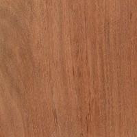 Tiete Rosewood (Guibourtia hymenaeifolia)