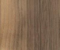 Black Walnut (sapwood demarcation)