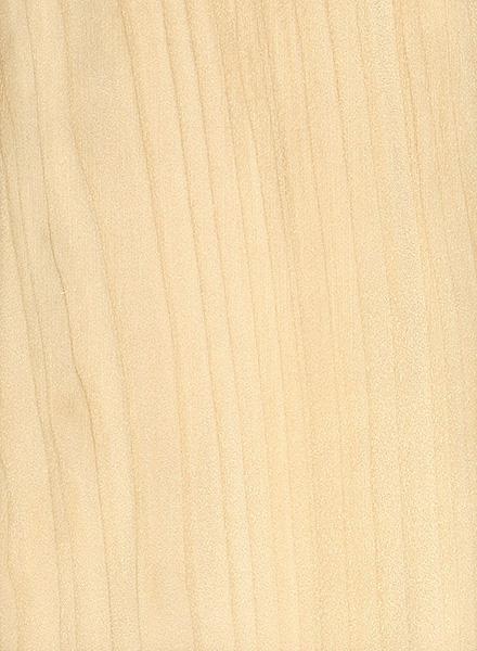 Water Tupelo The Wood Database Lumber Identification