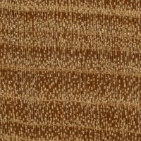 West Indian Satinwood (endgrain 10x)