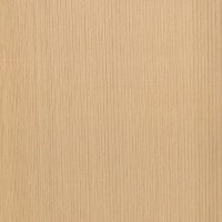 Western Red Cedar (Thuja plicata)