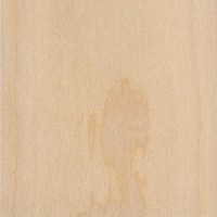 Western White Pine (Pinus monticola)