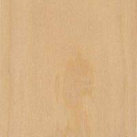 Western White Pine (sealed)