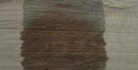White Oak (8 minutes)
